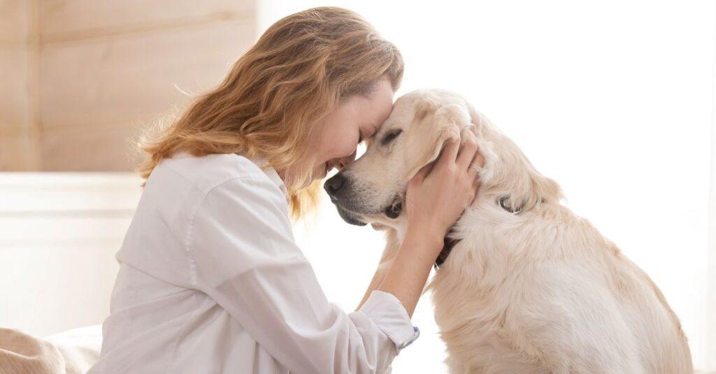 ¿Es bíblico orar por nuestras mascotas?
