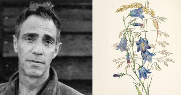 Growing Through Grief: Derek Jarman sobre la jardinería como redención creativa, consagración del tiempo y campo de entrenamiento para la presencia