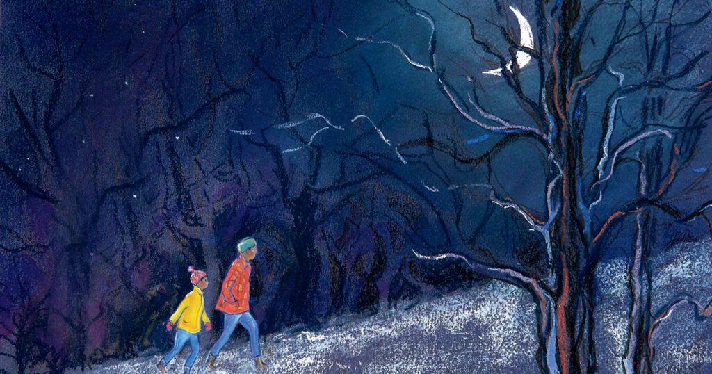 Buscando una aurora: una maravillosa celebración ilustrada del espectáculo de luz y color más sobrenatural de la Tierra