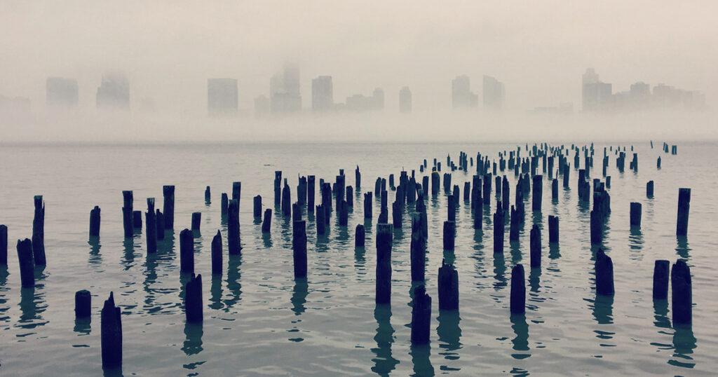 Mido cada dolor que encuentro: Emily Dickinson sobre el amor y la pérdida