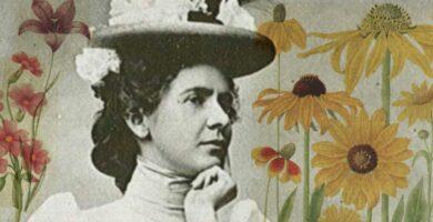 Flores de las Montañas Rocosas: la atrevida vida y el arte de la pionera ecologista de plantas Edith Clements