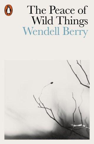 La paz de las cosas salvajes: el antídoto poético contra la desesperación de Wendell Berry, animado